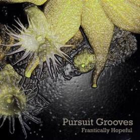 Pursuit Grooves